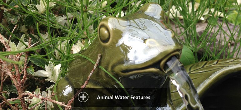 Animal water features